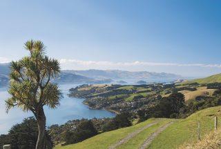 Dunedin landskap på Nya Zeeland