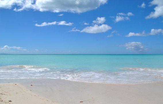 turkost vatten på Antigua Karibien