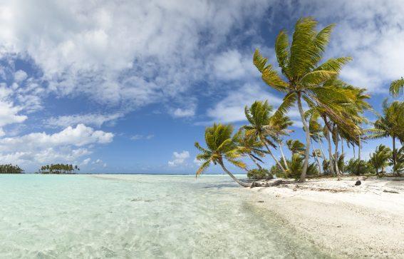 Bahamas med vita stränder och tropiska palmer Karibien