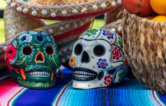Sydamerika skulls