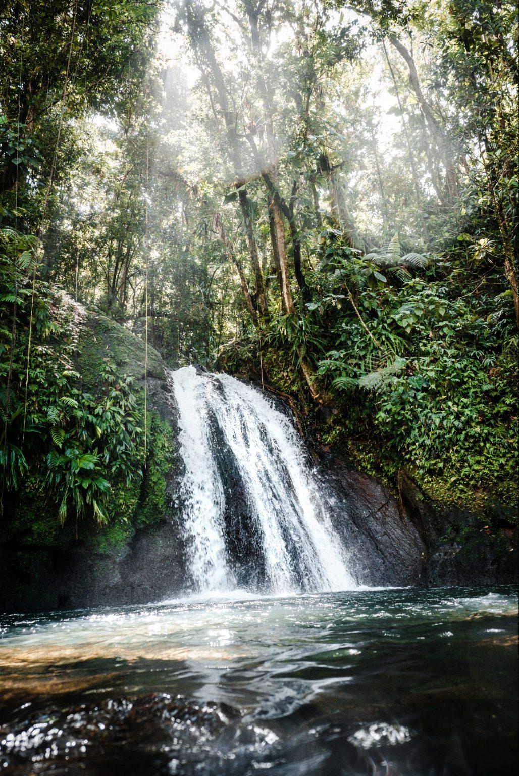 Vattenfall och natur i Guadeloupe