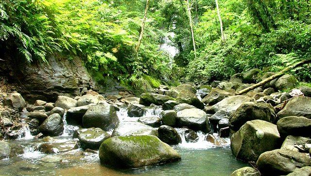 Puntaneras-Costa-Rica